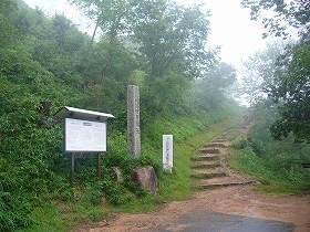 takedawada02.jpg